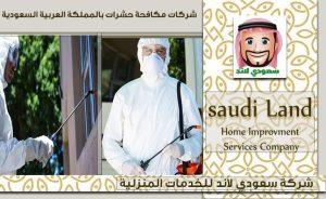 شركات مكافحة حشرات بالمملكة العربية السعودية
