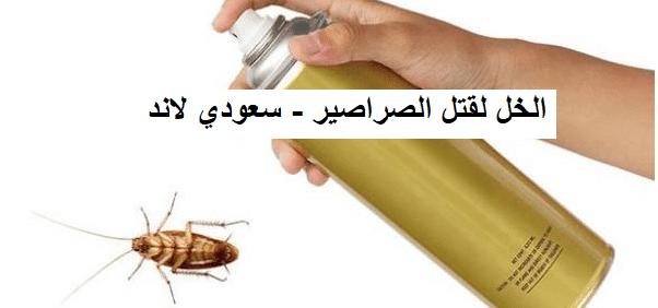 القضاء على الصراصير بالخل